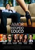 Amor, Estúpido e Louco (em HD)