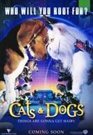 Como Cães e Gatos (V.O.)